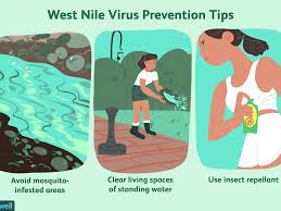 West Nile Virus: Overview and More